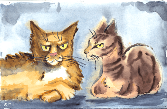 pair-o-cats