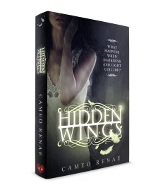 Hidden_Wings_Hardback