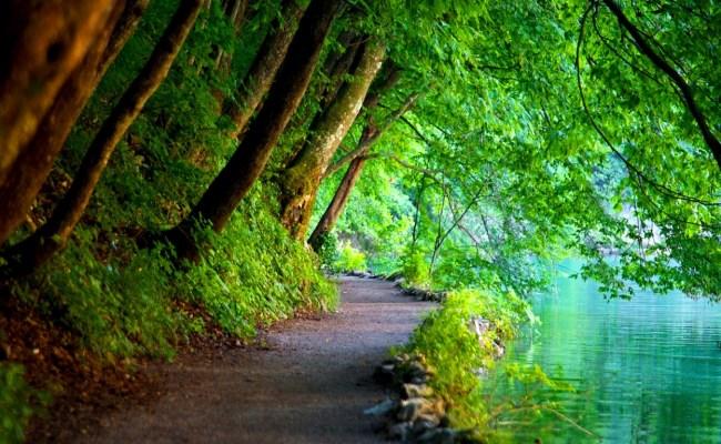 Nature Utslblog