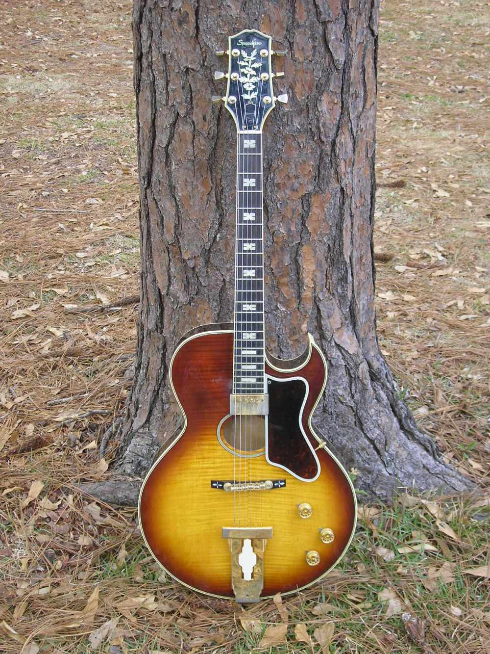 medium resolution of from jon dalton i ve learned that two versions of this guitar were sold in the united kingdom under the ibanez and antoria