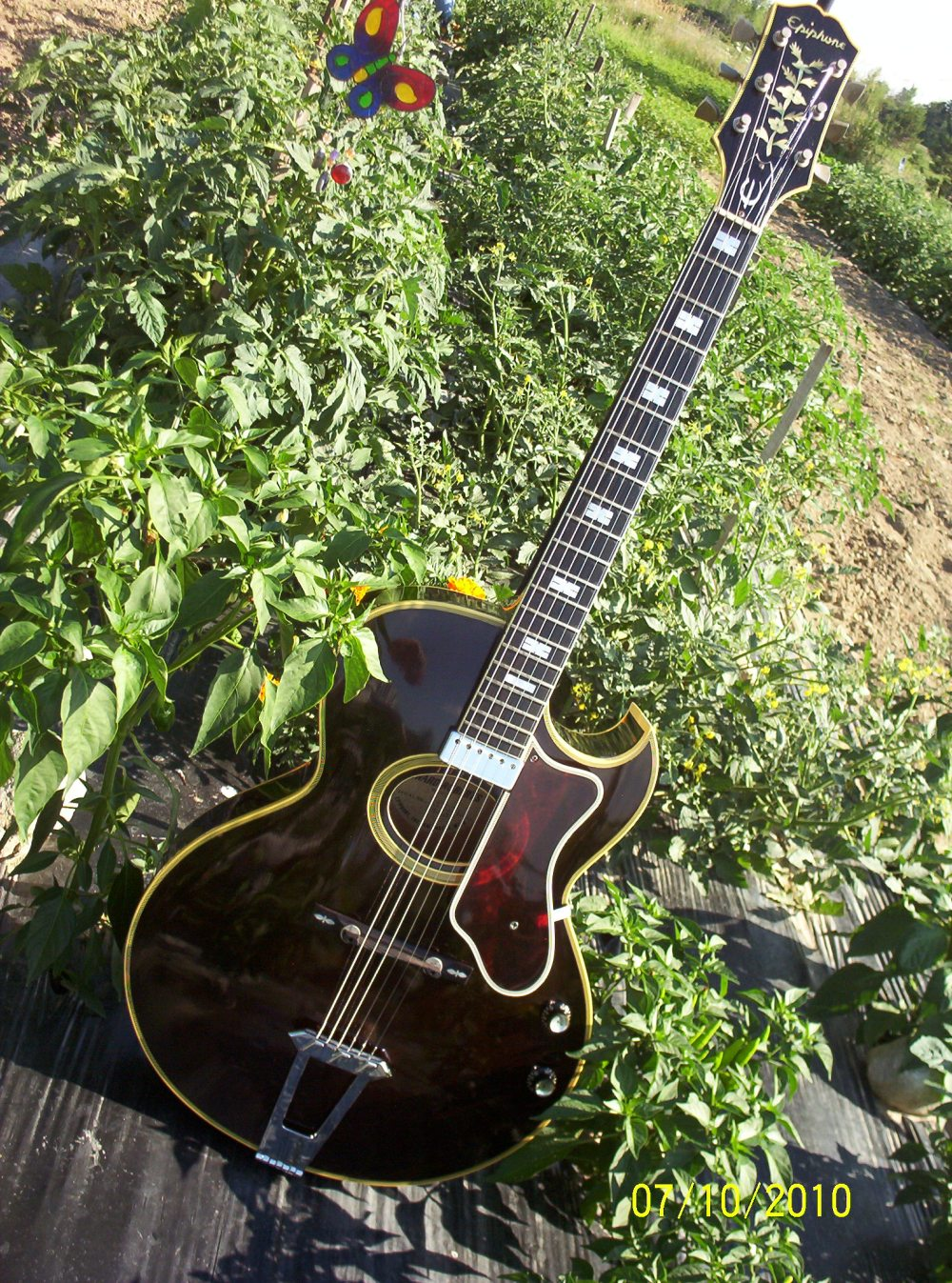 medium resolution of this guitar was previously owned by jazz guitarist edward eudimio marocco of new haven michigan and was sold to me by his guitarist son james rocco