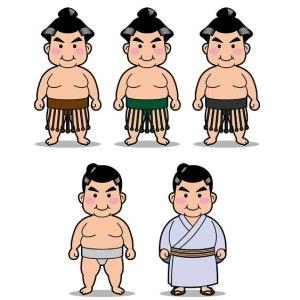 相撲 廻し 色