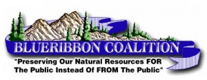 BlueRibbon Coalition