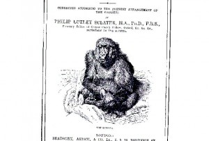 Dr. Utz Anhalt » Darwin, Zoos and the natural