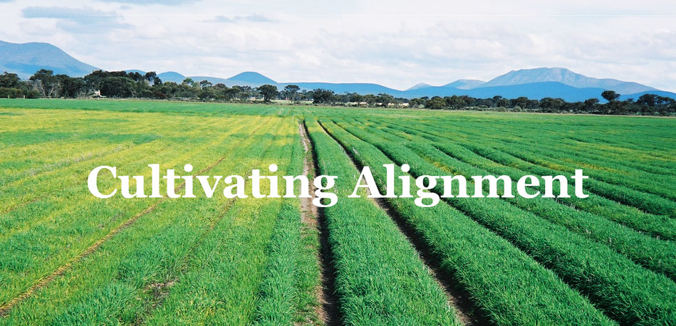 You are currently viewing Cultivating Alignment
