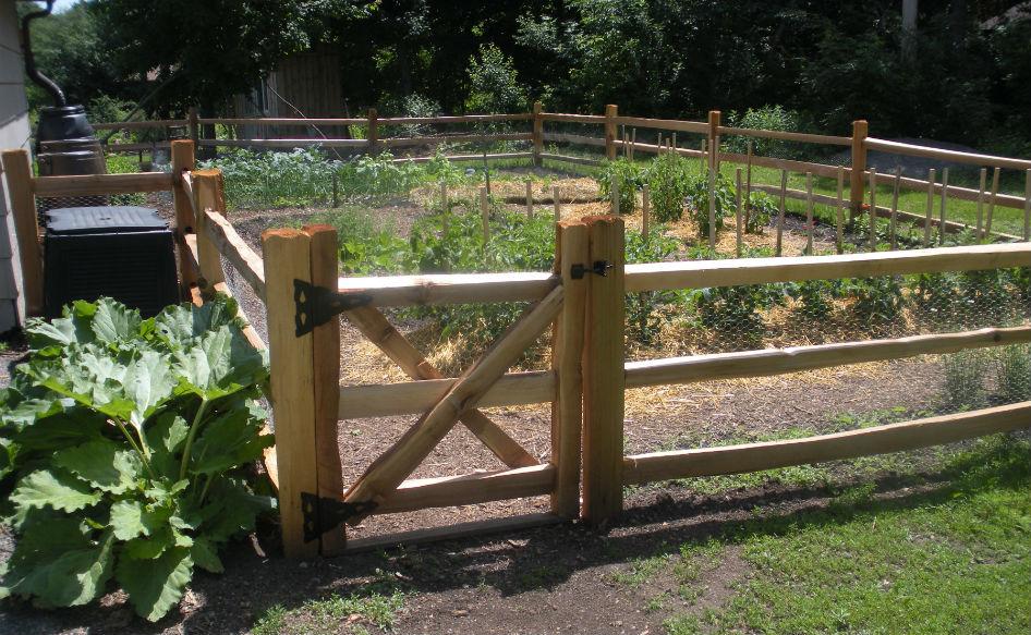 Our UUFM Garden