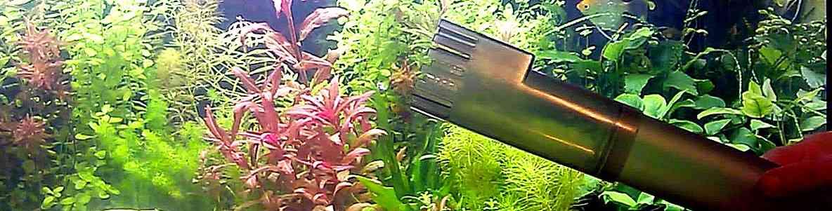 Сифонка грунта в травнике