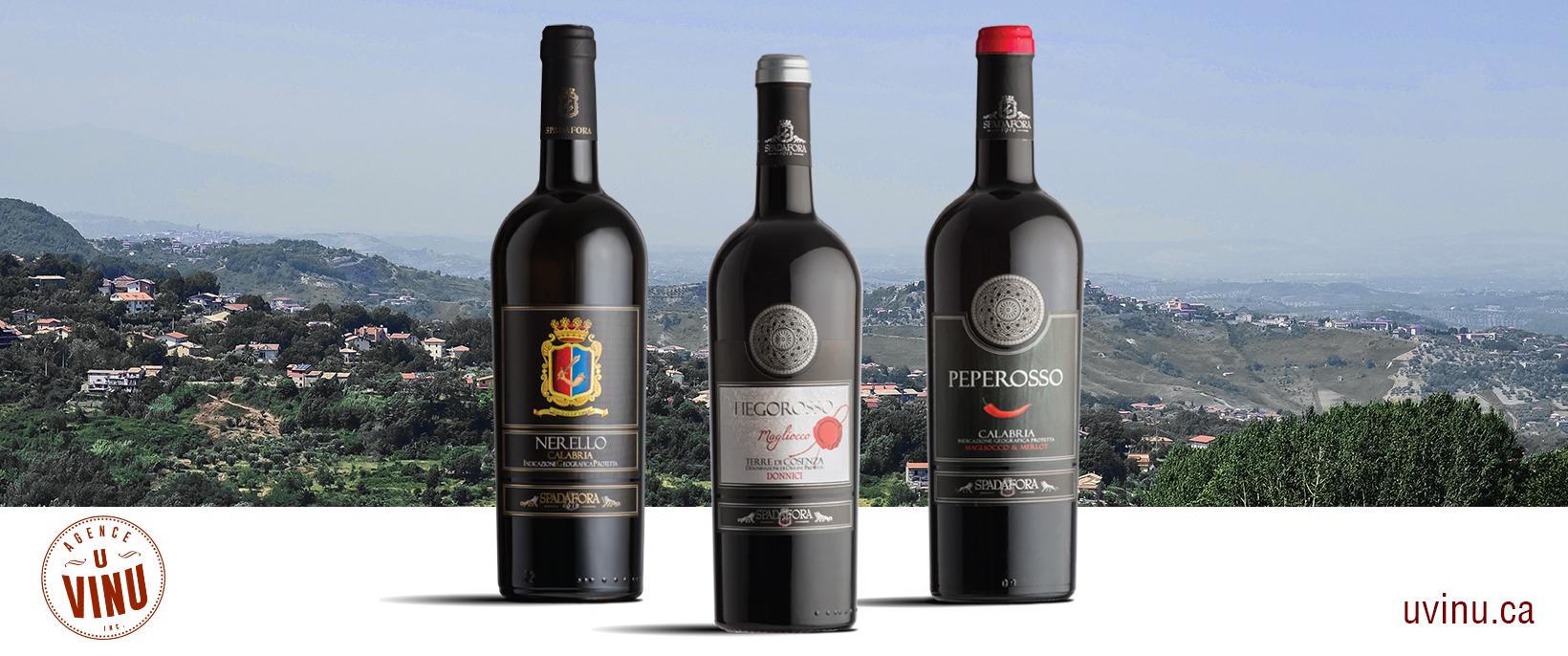 Vin italien importation privée SAQ Calabre