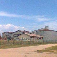 Kiliba-RDC:  Relance des travaux de la sucrerie du Kivu