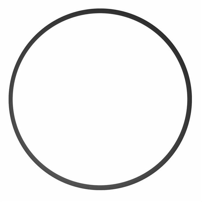 Ikelite Haupt O-Ring für diverse Kompakt-Gehäuse (0110
