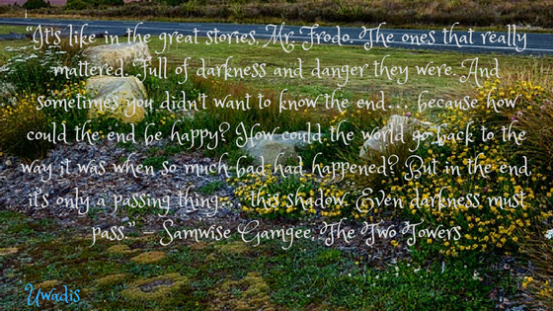 """""""It's like in the great stories, Mr. Frodo. The ones that really mattered. Full of darkness and danger they were. And sometimes you didn't want to know the end… because how could the"""