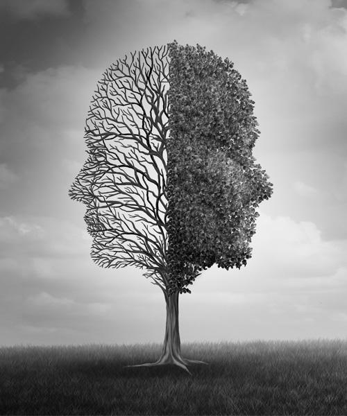 Epilepsie und epileptische Anfälle - wie kann CBD helfen?