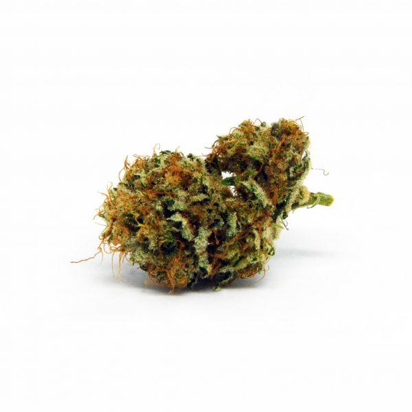 Ganjah Jahvina 1, CBD Blüten