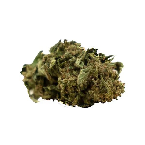Herba di Berna Cannatonic Outdoor 1, Fleurs CBD