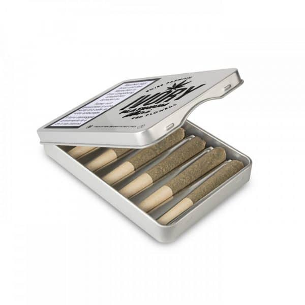 Ivory Platinum Mini