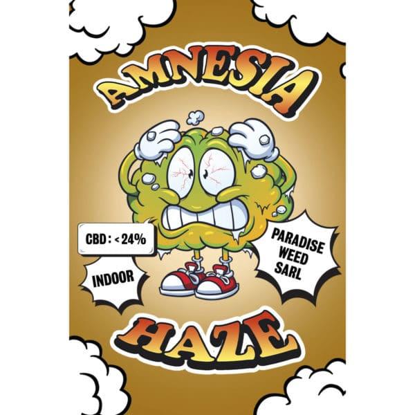 Paradise Weeds Amnesia Haze Indoor, Fleurs CBD