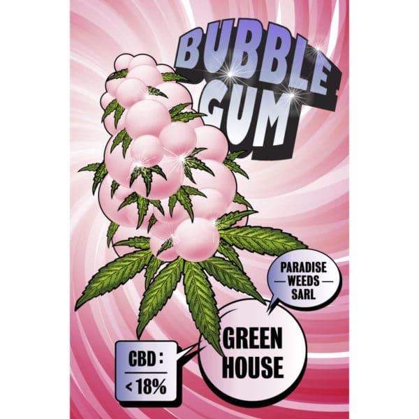 Paradise Weeds Bubble Gum Greenhouse, CBD Flowers