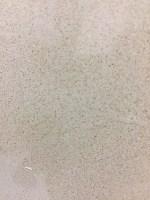Quartz Countertop - Spain Beige