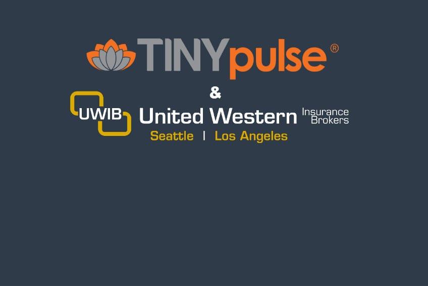 TINYpulse x UWIB