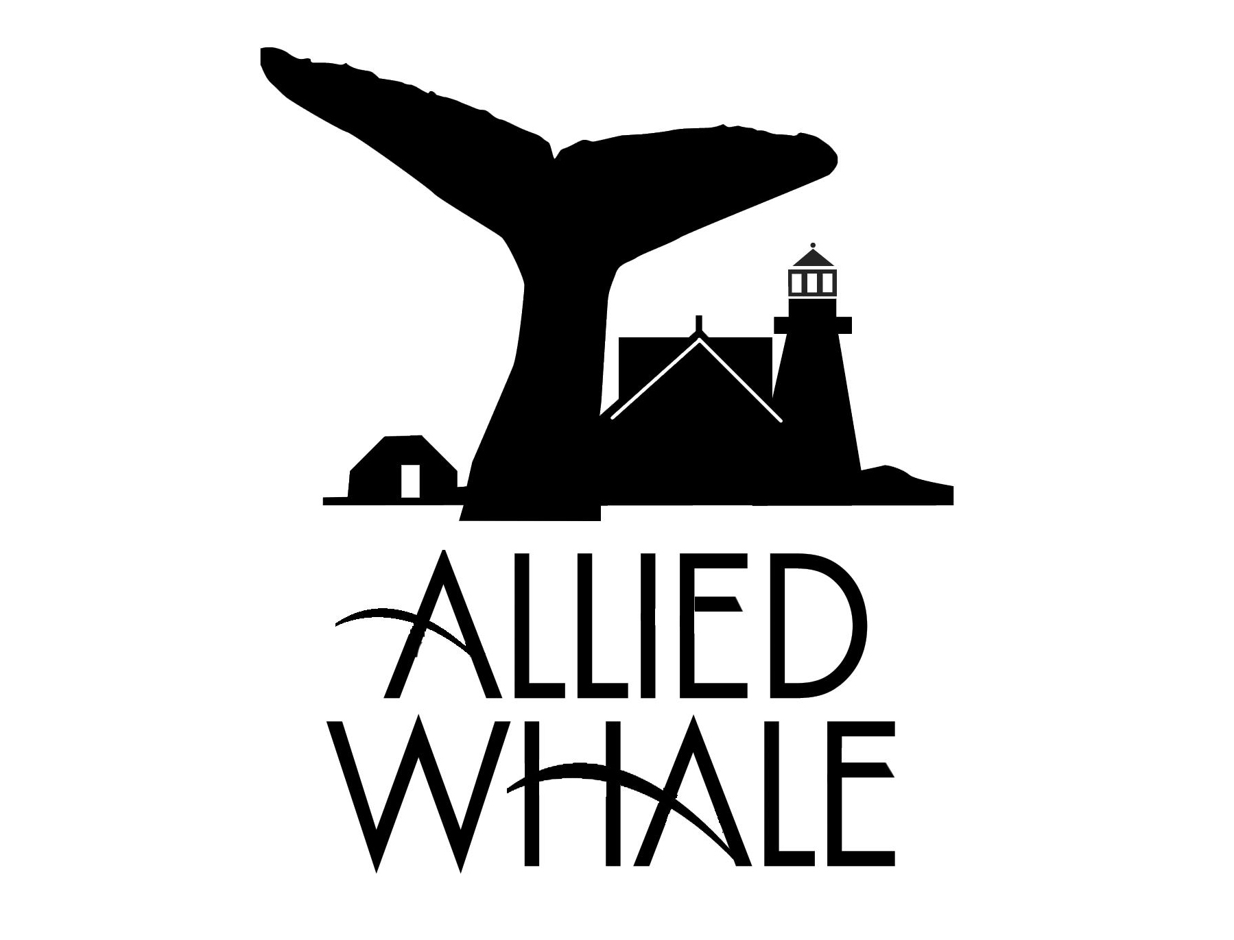 Allied Whale Intern/Research Assistant Positions