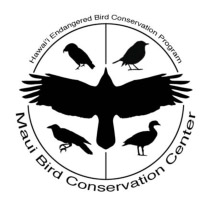 Internship Opportunity: Aviculture