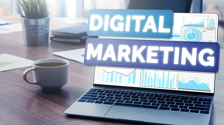 Are you a graduate with software testing or marketing or technical writing experience? Best Digital Marketing Courses & Training (2021)
