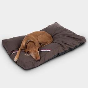 coussin couchage pour chien zooplus