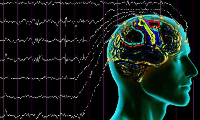 beyin dalgalari sinyal