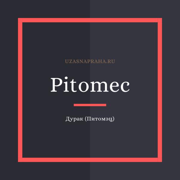 По-чешски дурак - Pitomec