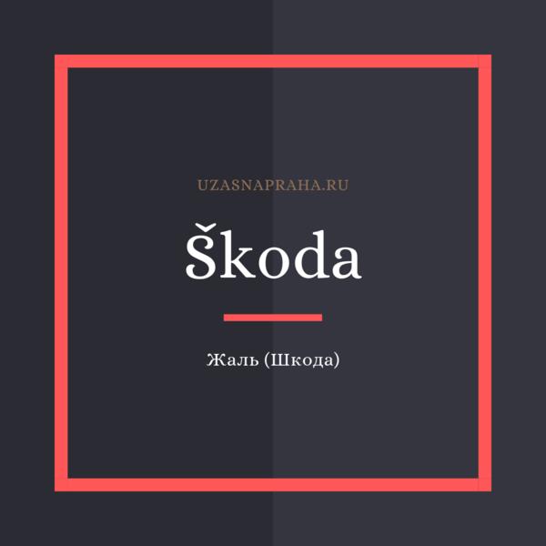 По-чешски жаль, жалко — Škoda