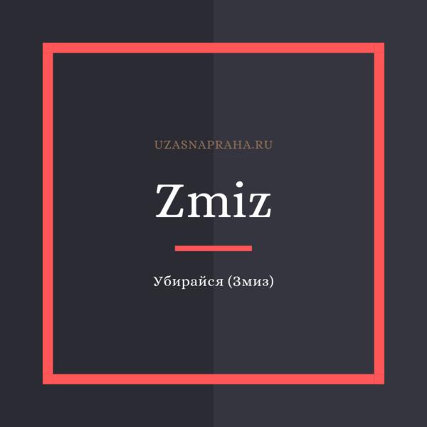 По-чешски убирайся — Zmiz!