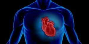 Пониженная и повышенная фракция выброса сердца