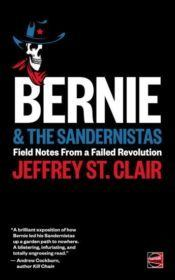 bernie-the-sandernistas-cover-344x550-e1477943826411