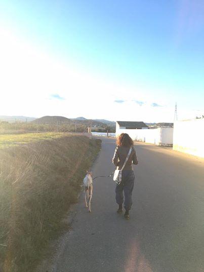 Собака со сломанной лапой вела людей более 3 км к своим маленьким щенкам!