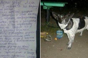 Вам письмо! К пустой скамейке в ночном сквере была привязана собака и записка…