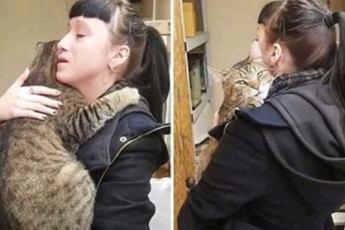 Старый кот в приюте крепко обнял женщину, но она отказалась его брать. Это и помогло ему обрести новый дом
