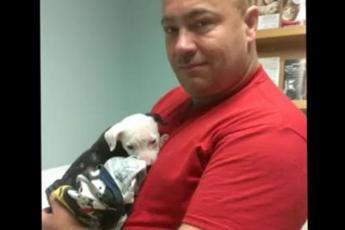 Пожарный вынес щенка из огня – но хозяева отказались от малыша. И тогда спасатель вырастил его сам!
