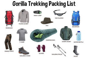 What To Pack For Gorilla Trekking in Uganda