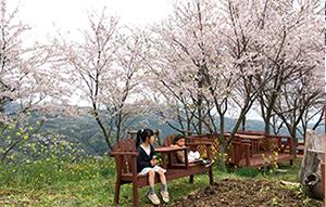 長尾城公園の絶景デッキ