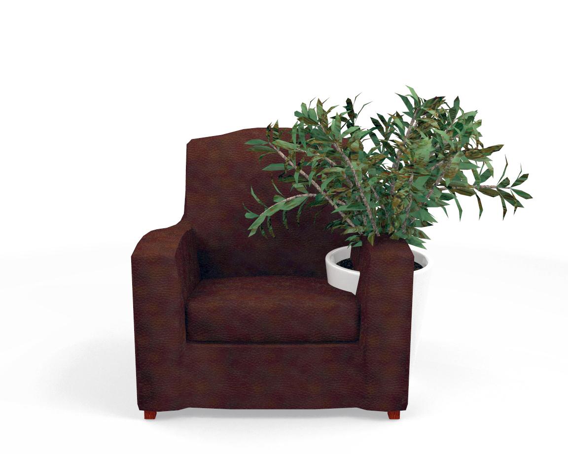Inadéquation spatio-temporelle légère, n°368 : accessoires d'interieur, fauteuil-plante, 2011