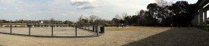 Governors Park dog park panorama