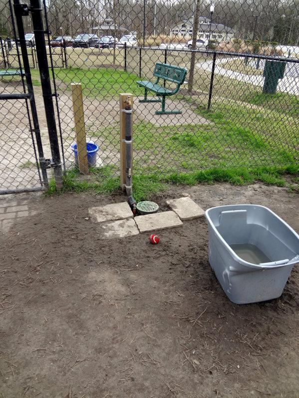 Wescott Dog Park