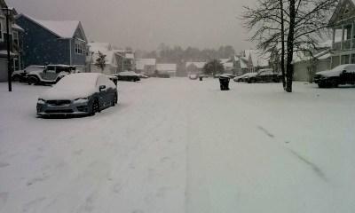 Snow covered neighbourhood