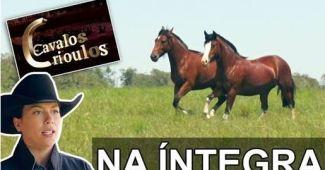 Programa Cavalos Crioulos de 09-12-2018