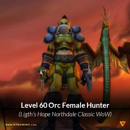 Orc hunter wow