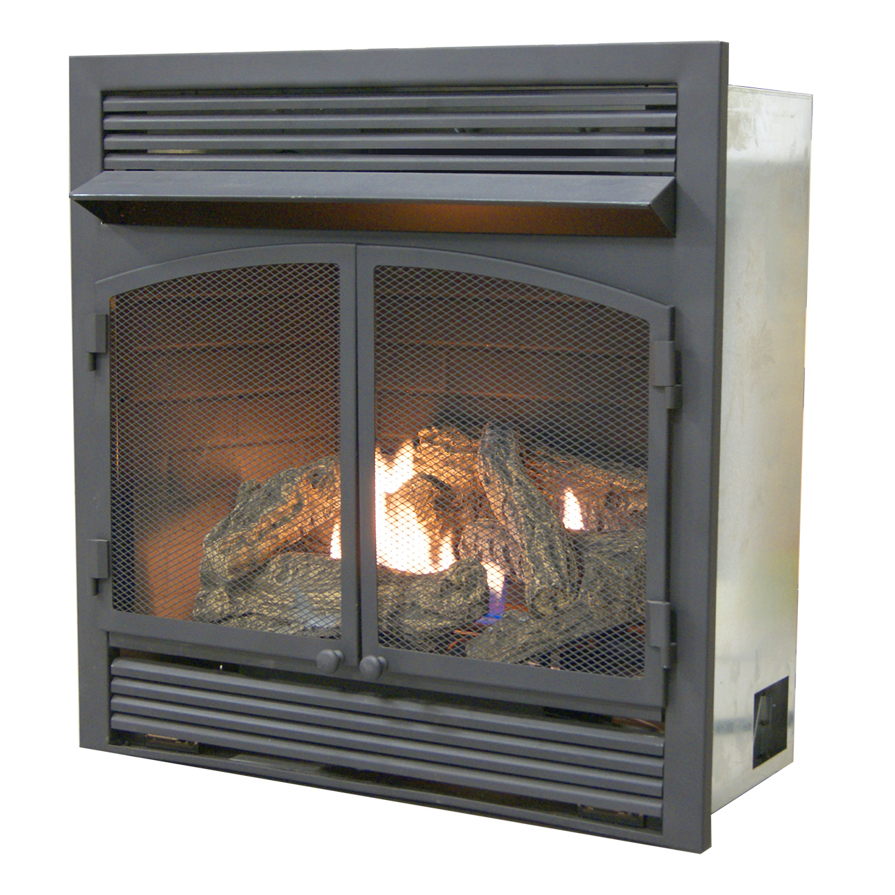 Dual Fuel Fireplace Insert Zero Clearance With Remote