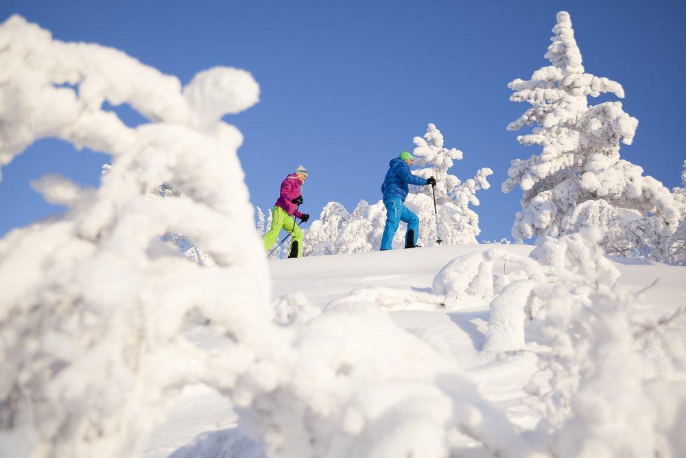 yllas_snowshoeing_lapland_finland