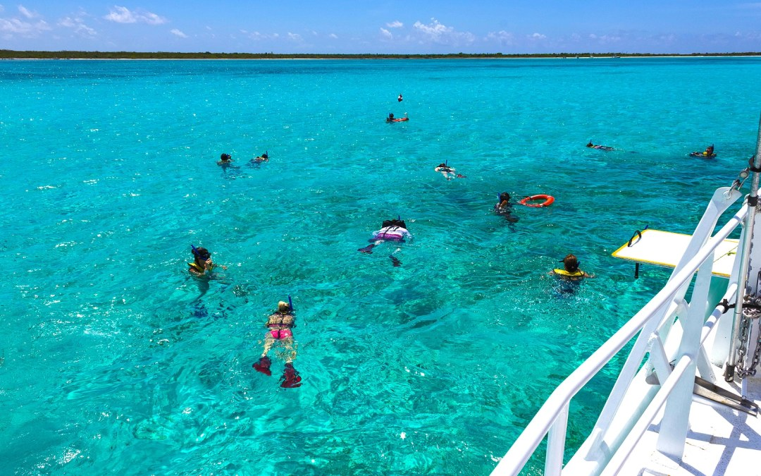 Vacancy Rewards Reviews Best Snorkeling Spots in Cozumel