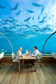 Conrad Maldives Rangali Island 2 Islands And Spa