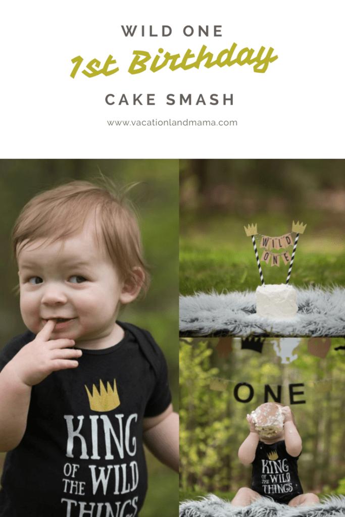 Wild One Cake Smash